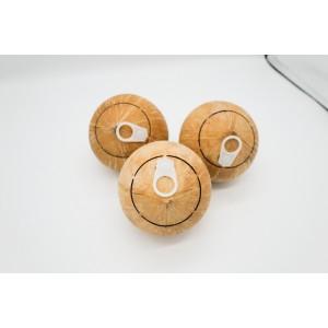 생 코코넛 8kg (16수)